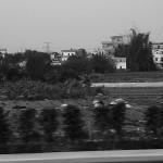 土地 从村庄到城市 (12)