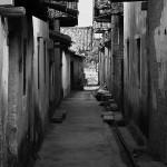 土地 从村庄到城市 (4)