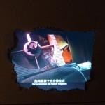 2010 Frieze Art Fair ROOM608 (11)