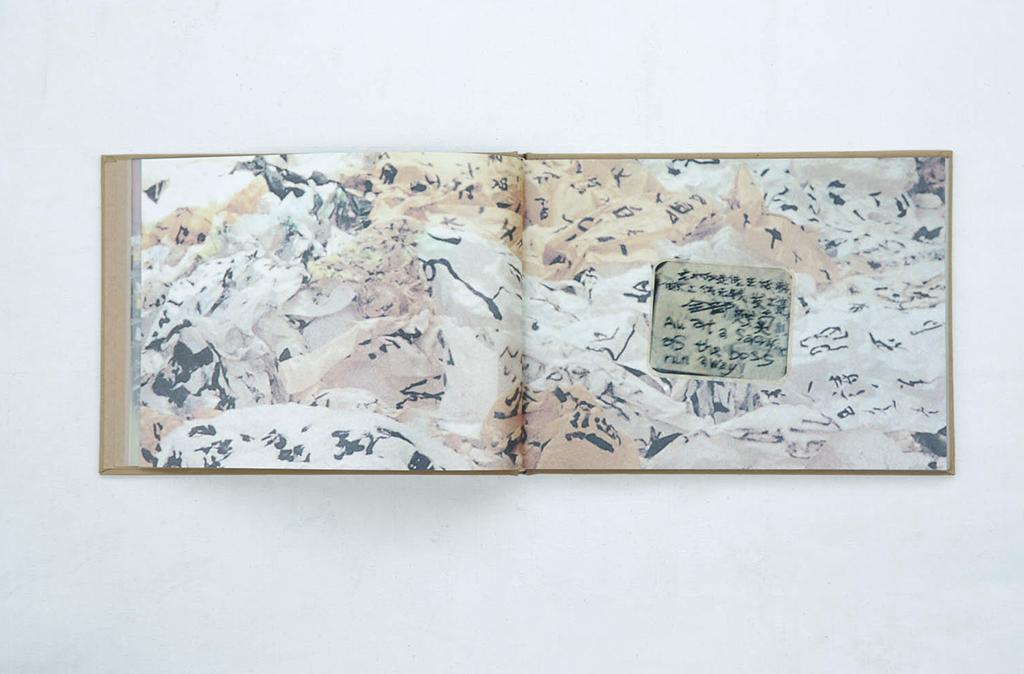 《阳江组: 协同作战,并前赴后继》,广州:维他命艺术空间,中英双语,2005。