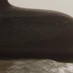 vlcsnap-2014-11-13-16h20m25s216