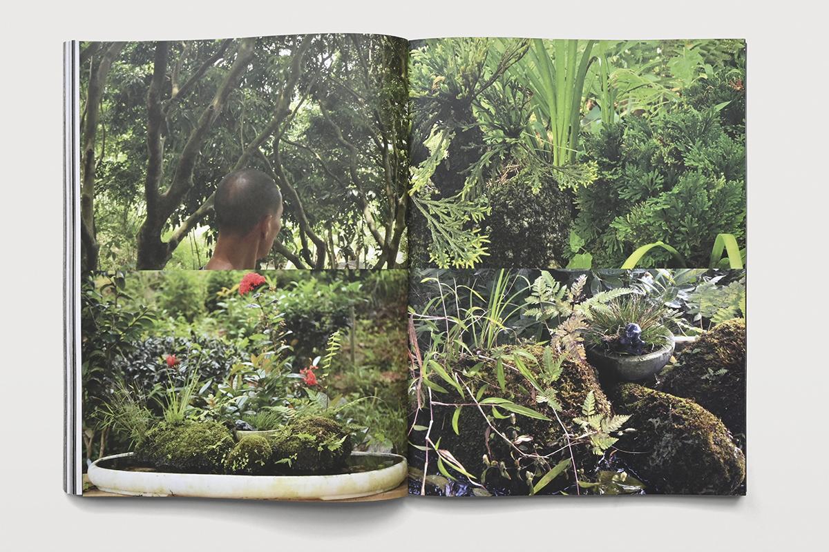 ZGG-The Everlasting Garden-184_01_72dpi_W1200